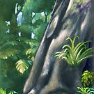 Forest Giant by Patricia Howitt