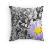 Symphyotrichum Novae-Angliae Throw Pillow