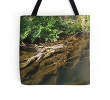 Beneath the surface I Tote Bag