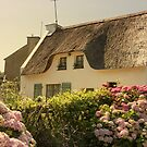 Hydrangea Cottage by Elaine Teague