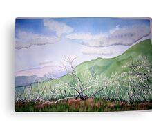 Summer  at  Mt.Feathertop  Canvas Print