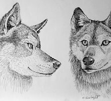 Two Wolves by sally seabright