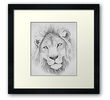 Lion's Head Framed Print