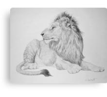 Lion #1 Canvas Print