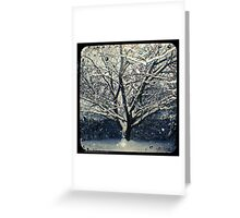 Winter Cherry Tree TtV  Greeting Card
