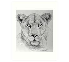Lioness Head Art Print
