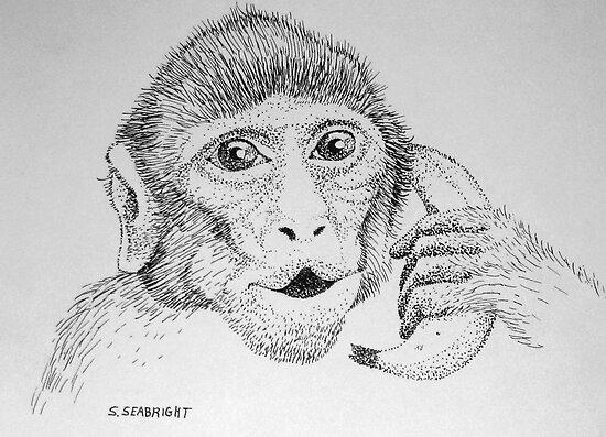 "Monkey on ""Phone"" by sally seabright"