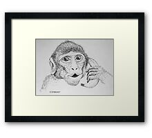"Monkey on ""Phone"" Framed Print"