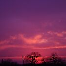 My Deepest Purple Sunset by Cheyenne