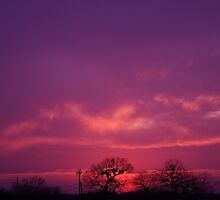 My Deepest Purple Sunset by Cheyenne