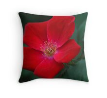 ....for you Throw Pillow