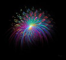 'Fireworks 2' by Scott Bricker