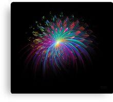 'Fireworks 2' Canvas Print