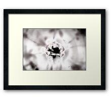 ATOM FUSION © Vicki Ferrari Framed Print