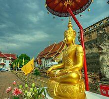 Sheltered Buddha  by Rob Hawkins