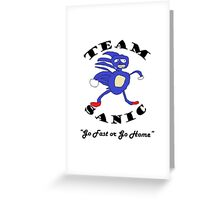 Team Sanic Greeting Card