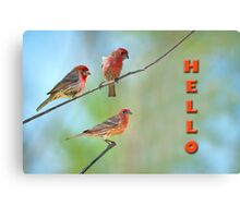 Hello from the Finch Family Canvas Print