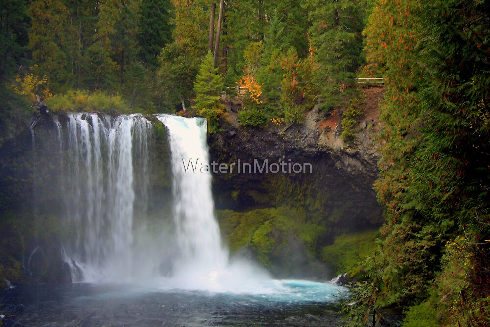 Koosah Falls, Oregon by WaterInMotion