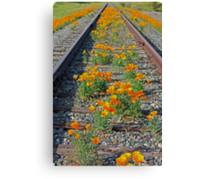 The road to California  Canvas Print