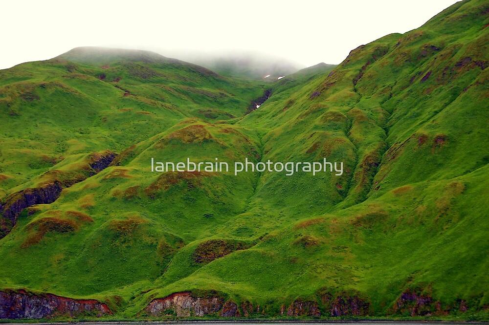 Green by lanebrain photography