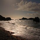 THE RUSH OF THE OCEAN WAVES by leonie7