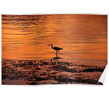 Orange Crane Sunset Poster