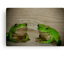 Happy and Sad frogs 2009 Canvas Print