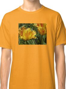 Golden Tulips Classic T-Shirt