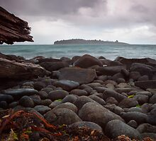 Huon Island by Chris Cobern