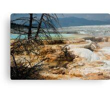 Mammoth Springs Metal Print