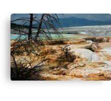 Mammoth Springs Canvas Print