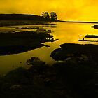 Table Mountain loch by Brentsimages