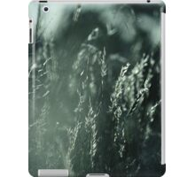 The Wind Cries Mary iPad Case/Skin