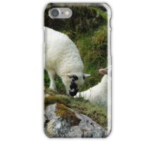 Roadside Lambs iPhone Case/Skin