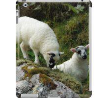 Roadside Lambs iPad Case/Skin
