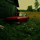 An Old Red Car by Liis