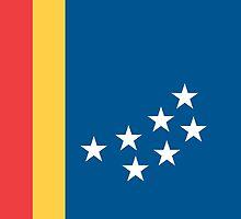 Flag of Durham, North Carolina by abbeyz71