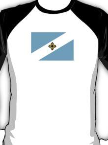 Flag of Madison, Wisconsin  T-Shirt