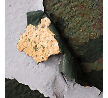 Corn Chip On Rye Photographic Print