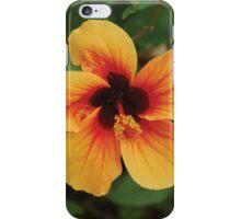 Floral Apeture iPhone Case/Skin