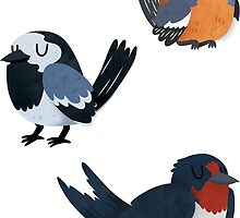 Cute Bird Stickers by Claire Stamper