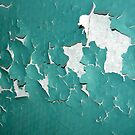 Teal Bathroom by Nicole Gesmondi
