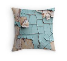 Teal States Throw Pillow