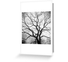 Twisted Intricacies Greeting Card