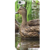 Cloystered Sisters iPhone Case/Skin