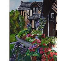 a country cottage garden Photographic Print