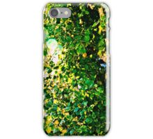 Sunshine and Greenery iPhone Case/Skin