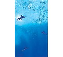 Underwater Ocean Scene Photographic Print