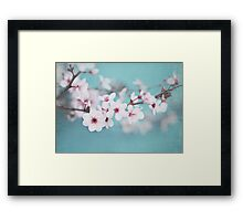 Blossoms on Blue Framed Print