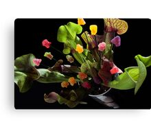 Jelly Baby Junglism Canvas Print